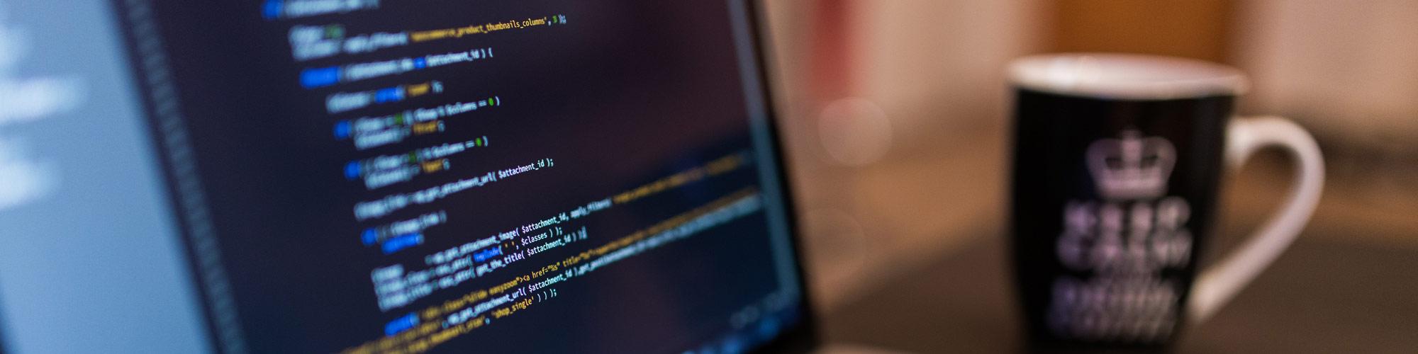 Web Entwickler Jobs